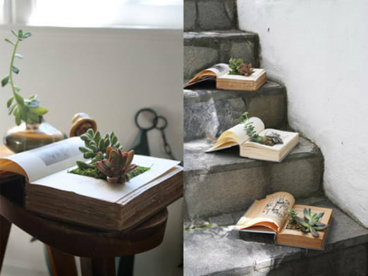 Top Easy Dollar Store Projects: Book Planters