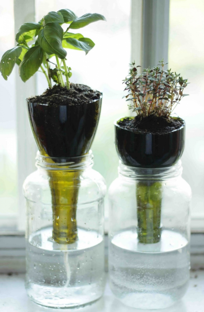 Self Watering Glass Planters