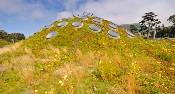 Going Green Up High – 7 Of The Biggest And Best Living Roofs In The World